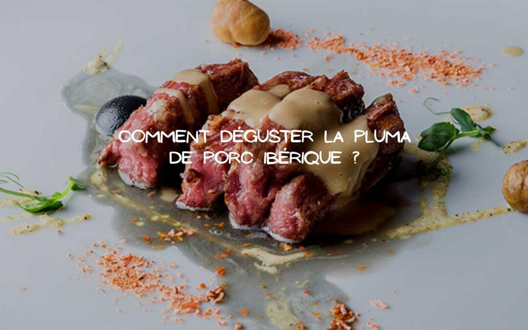 pluma-de-porc