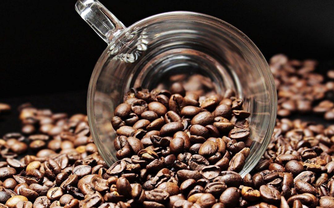 Choisir son café en grains avec la plus grande précision