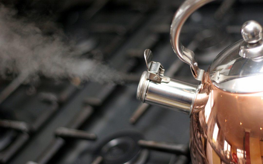 Zoom sur la bouilloire électrique à température réglable
